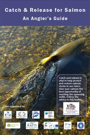 Catchand release leaflet 2013