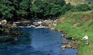 River Oykel news
