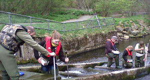 Assessing Barriers To Fish Passage